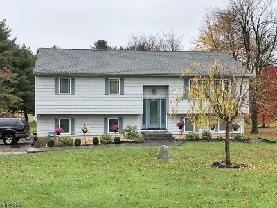 Hillsborough Twp. Single Family Home For Sale: 876 Amwell Rd