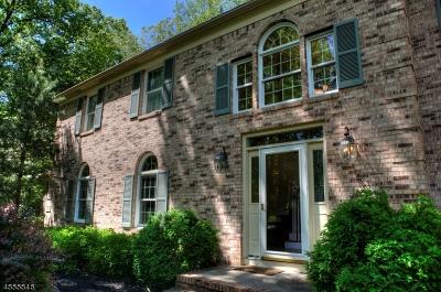Montgomery Twp. Single Family Home For Sale: 24 Coddington Ct