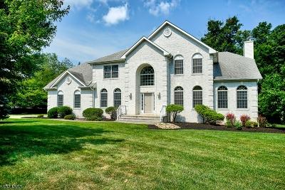 Warren Twp. Single Family Home For Sale: 39 Angus Ln