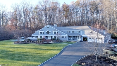 Randolph Twp. Single Family Home For Sale: 18 Old Wood Ln
