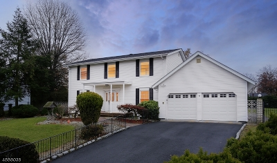 Piscataway Twp. Single Family Home For Sale: 9 Smoke Tree Close
