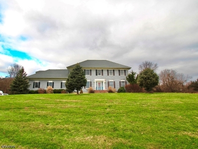 Readington Twp. Single Family Home For Sale: 58 Woodschurch Rd