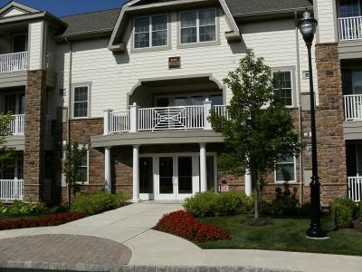 Bridgewater Twp. Condo/Townhouse For Sale: 463 Victoria Dr #463