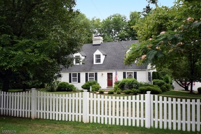 Florham Park Boro Single Family Home Sold: 94 Ridgedale Ave