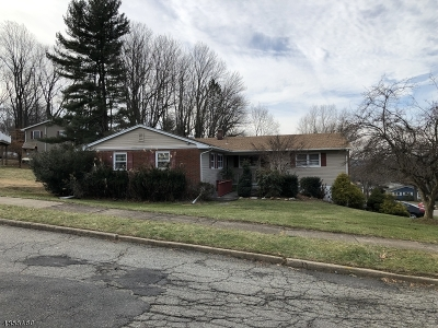 Roxbury Twp. Single Family Home For Sale: 3 Toby Dr