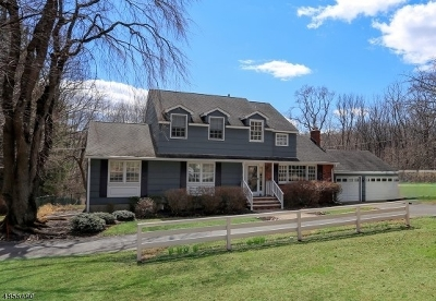 Chester Twp. NJ Single Family Home For Sale: $538,000