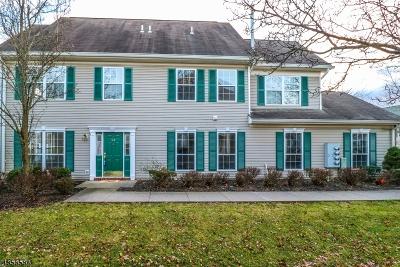 Bridgewater Twp. Condo/Townhouse For Sale: 364 Ellen Ln