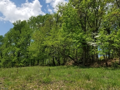 Bridgewater Twp. Residential Lots & Land For Sale: 4 Caruso Ct