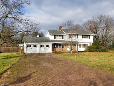 Randolph Twp. Single Family Home For Sale: 25 Clear View Dr