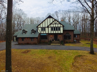 Chester Twp. NJ Single Family Home For Sale: $929,900