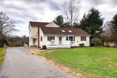Flemington Boro, Raritan Twp. Single Family Home For Sale: 5 Millbrook Rd