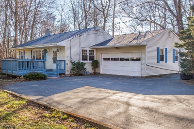 Randolph Twp. Single Family Home For Sale: 12 Walnut St