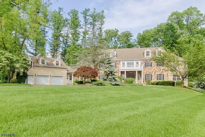 Mendham Boro, Mendham Twp. Single Family Home For Sale: 3 Reservoir Ridge Rd