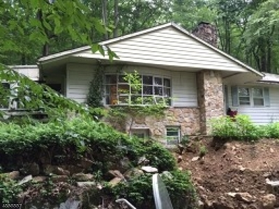 Mount Olive Twp. Single Family Home For Sale: 82 River Rd