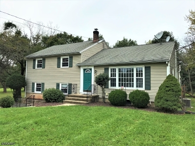 Flemington Boro, Raritan Twp. Single Family Home For Sale: 149 Pennsylvania Ave