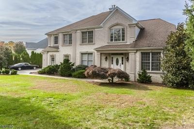 Wayne Twp. Single Family Home For Sale: 29 Almadera Dr