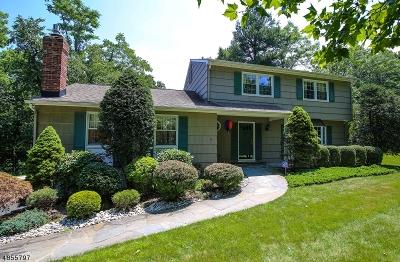 Morris Twp. NJ Rental For Rent: $3,850