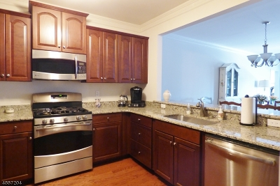 Rockaway Twp. Condo/Townhouse For Sale: 1207 Hale Dr #207