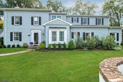 Westfield Town NJ Single Family Home For Sale: $699,000