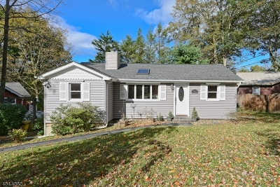 Sussex County Single Family Home For Sale: 100 Silver Fox Trl