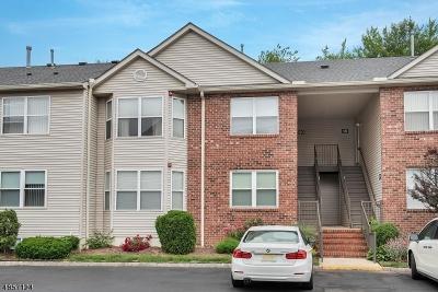 East Hanover Twp. NJ Rental For Rent: $2,450