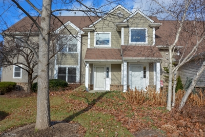 Sussex County Condo/Townhouse For Sale: 17 Bourne Cir