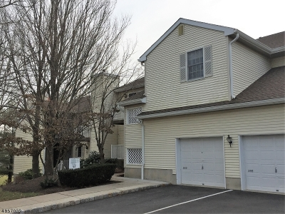 Bernards Twp. NJ Condo/Townhouse For Sale: $266,000
