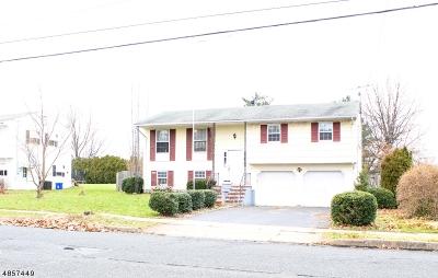 Somerville Boro Single Family Home For Sale: 121 Rehill Ave