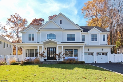 Westfield Town NJ Single Family Home For Sale: $1,875,000