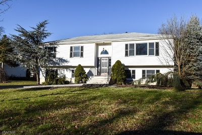 Parsippany-Troy Hills Twp. Single Family Home For Sale: 10 Patrician Ct