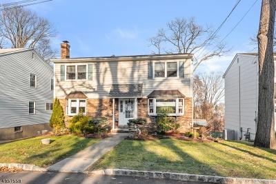 Dover Town Single Family Home For Sale: 106 Jordan Ter
