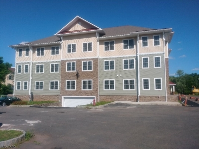 Branchburg Twp. Condo/Townhouse For Sale: 248 N Branch River Rd #248
