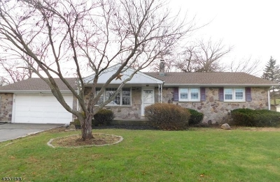 Holland Twp. Single Family Home For Sale: 12 McEntee Rd