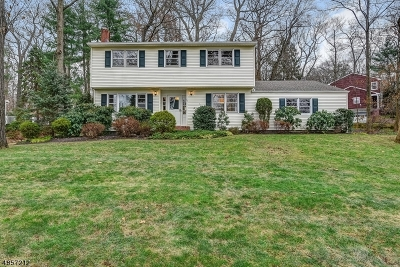 Berkeley Heights Twp. Single Family Home For Sale: 99 Exeter Dr