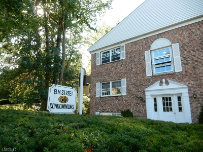 Morristown Town Single Family Home Sold: 50 Elm St Apt A7 #A7