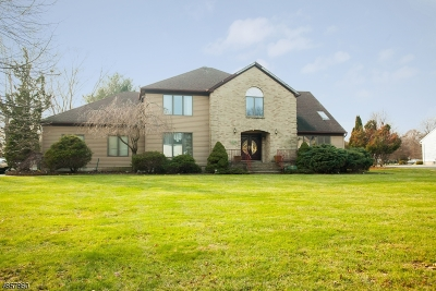 Scotch Plains Twp. Single Family Home For Sale: 43 Winchester Dr