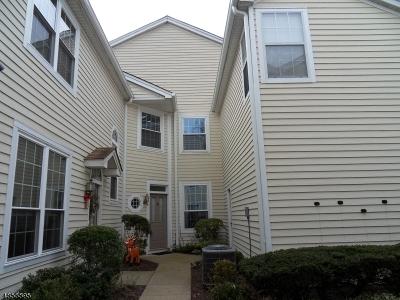 Bedminster Twp. NJ Rental For Rent: $2,300