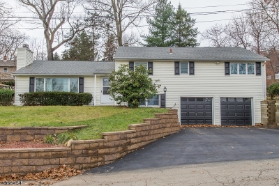Rockaway Boro Single Family Home For Sale: 35 Arbor Ave