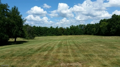 Montgomery Twp. NJ Residential Lots & Land For Sale: $325,000