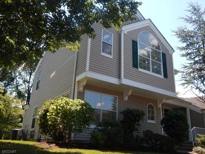 Bedminster Twp. NJ Rental For Rent: $2,350