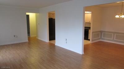 Hillsborough Twp. NJ Rental For Rent: $1,700