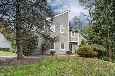 Randolph Twp. Single Family Home For Sale: 2 Bonnell Ln