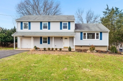 Bridgewater Twp. Single Family Home For Sale: 485 Vicki Dr