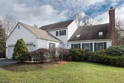 Bernards Twp. NJ Single Family Home For Sale: $539,900