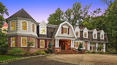 Warren Twp. NJ Single Family Home For Sale: $1,179,000