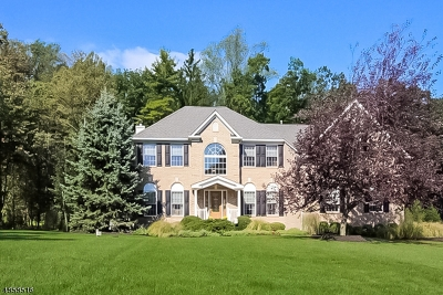 Alexandria Twp., Frenchtown Boro Single Family Home For Sale: 3 Hartley Ct