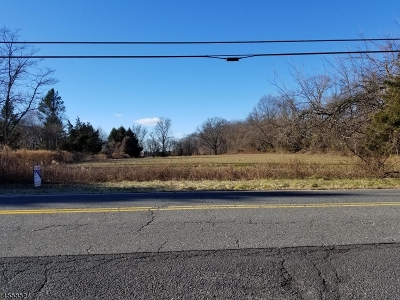 Hillsborough Twp. Residential Lots & Land For Sale: 201 Woods Rd