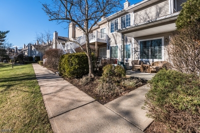 Bedminster Twp. Single Family Home For Sale: 44 Stevens Court