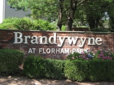 Florham Park Boro Rental For Rent: 65 Brandywyne Dr
