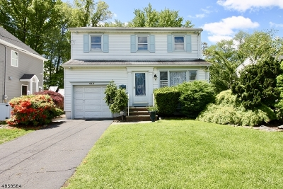 Cranford Twp. Single Family Home For Sale: 613 Hory St